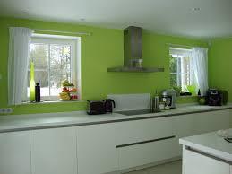 peinture cuisine vert anis cuisine gris et vert anis peinture murale indogate mc collection