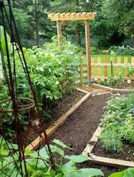 Backyard Vegetable Gardening by Creating Perfect Garden Designs To Beautify Backyard Landscaping