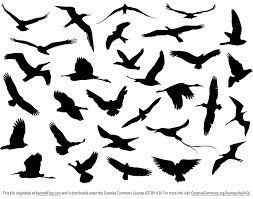 free silhouette images free vector flying birds silhouette