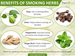 benefits of native plants 9 amazing benefits of smoking organic facts