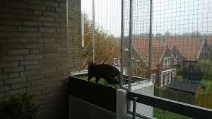 balkon katzensicher machen der katzennetz profi führt bundesweit montagen katzennetze aus
