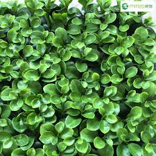 china outdoor artificial plants china outdoor artificial plants