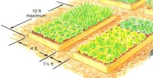 raised garden design vegetable bed design raised bed design and
