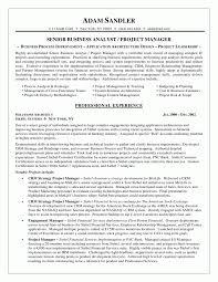 Sample Resume Purchasing Manager Data Architect Sample Resume