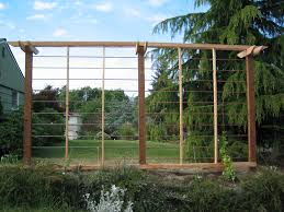 66 best trellis design images on pinterest trellis design