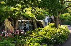 Ucr Botanical Gardens The Birdiest Botanical Gardens Birds And Blooms