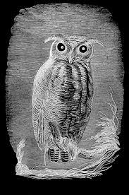 Halloween Owl Pictures Vintage Halloween Clip Art Spooky Owl Graphics Fairy Vintage