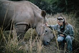 who is the founder of mercedes petronel nieuwoudt founder of care for rhino sanctuary