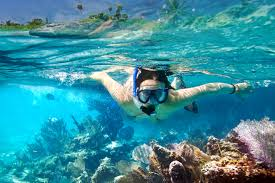 Hawaii Snorkeling images 7 best snorkel spots in hawaii jpg