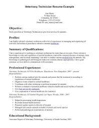 Child Care Assistant Resume Sample Vet Tech Job Description Sample Help Desk Cover Letter Service