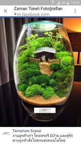 465 best terrariums images on pinterest fairies garden fairy