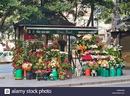 flower shop outdoor flower shop on median in malaga spain stock photo