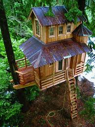 106 best Tree houses images on Pinterest  Treehouses Tree houses