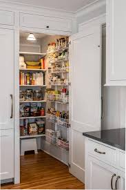 Kitchen Pantry Design Paneled Cabinet Door Opens To Kitchen Pantry Transitional