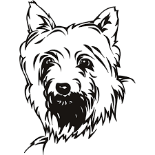 scottish terrier dog coloring pages