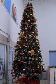 img 20130927 132215 064 led tree lights