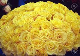big bouquet of roses the big bouquet from set of yellow roses stock photo picture and
