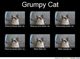Tard The Grumpy Cat Meme - 10 tard cat memes you probably know already