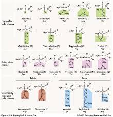 39 best nbde part i images on pinterest medicine physiology and