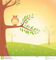 cartoon owl on the tree royalty free stock images image 23594559