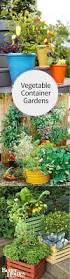 Vegetable Container Gardens Collection Growing Vegetables In Containers Ideas Photos Free