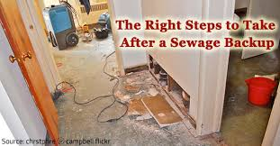 Sewage Coming Out Of Bathtub What To Do After A Sewage Backup