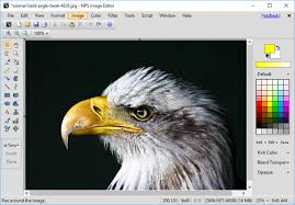draw paint and optimize your pictures with nps image editor