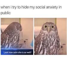 Anxiety Meme - hiding anxiety lol pinterest memes humor and random