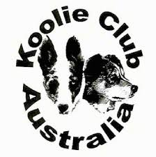 e locus australian shepherd koolie dog breed facts for those who just need to know