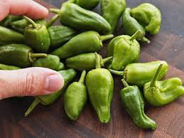 how to cook spanish style pimientos de padrón serious eats