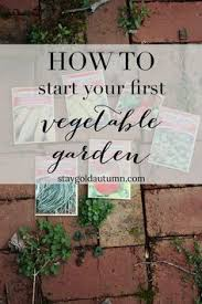 11 vegetables you can plant before the last frost gardens