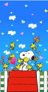 106 snoopy images peanuts snoopy snoopy