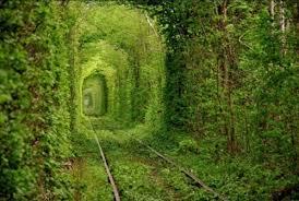 Tuneli Images?q=tbn:ANd9GcRlTiOhtXAkp7qLW4ng7_YTIvjgsKwiqAr8PudDLcuDB0-IfWl_