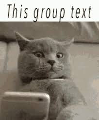 Group Text Meme - group text gifs tenor