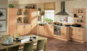 Modern Light Wood Kitchen Cabinets Pictures  Design Ideas - Built in cabinets for kitchen