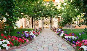 Landscaping Lawn Care by About Us Bc Lawncare Greenville Sc Landscaping Company
