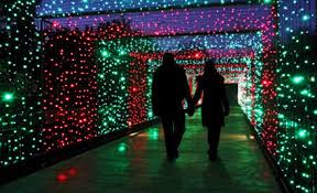 zoo lights at hogle zoo thrifty 101