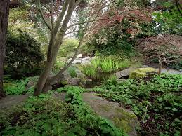 Botanical Garden Bellevue File Bellevue Botanical Garden Dilatatum Jpg Wikimedia Commons