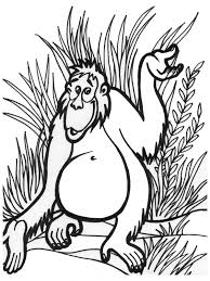jungle animal coloring pages 1212 bestofcoloring com