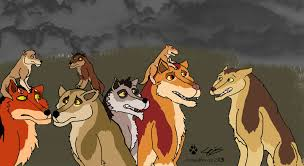 lion king wolf king color swap coolwolfbro deviantart