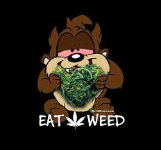 Meme Generator Homer Simpson - homer simpson weed memes cannabis 101 lesson