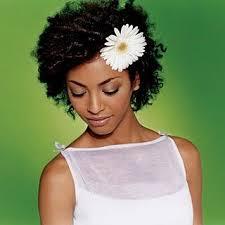 Frisuren F D Nes Haar by Die Besten 25 Afro Amerikanisches Up Ideen Auf