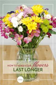How To Draw A Vase Of Flowers How To Make Your Fresh Cut Flowers Last Longer One Good Thing By