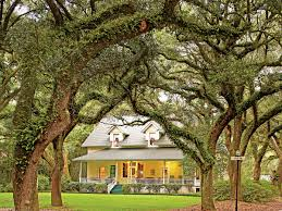Magnolia House Bed And Breakfast Franklin Tn 6 Things You Need To Know About Magnolia Springs Alabama