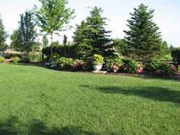 backyard landscaping ideas for privacy large and beautiful