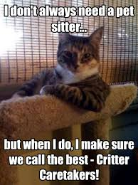 Cat Sitting Meme - why are once a day visits necessary for cat sitting simply the