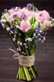 Spring Flower Pictures Best 25 Grape Hyacinth Flowers Ideas On Pinterest Grape