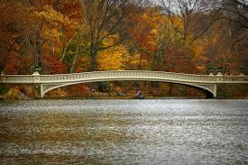 file bow bridge in central park on thanksgiving 2010 jpg