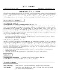 Software Analyst Resume Resume Commercial Credit Analyst Resume