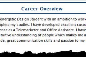 sample career summary overview resume